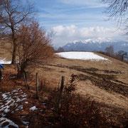 Pian d'Erba 1112 m