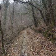 Sentiero che da Muceno 315 m sale alla Casa Profarè