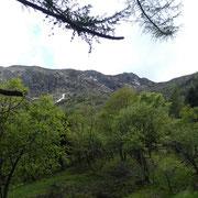 Verso il Monte Gradiccioli