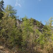 Salita al Monte Torriggia