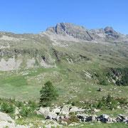 Alp de Mem 1950 m