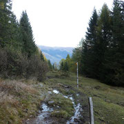 Dall'Alpe di Gardosa saliamo al Monte Püscett