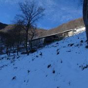 Arrivati all'Alpe Loasa 965 m
