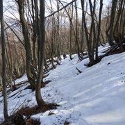 A 1200 m,  la prima neve