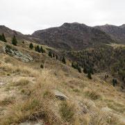 Sul sentiero per l'Alpe Pisciarotto