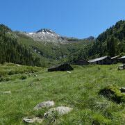 Alp di Rescignaga 1620 m