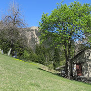 Monti di Saurù 1220 m