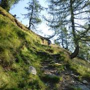 Traversa sotto l'Alpe di Porcaresc