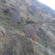"""Sul """"nuovo"""" sentiero per l'Alpe Crocc"""