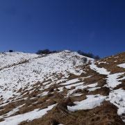 Monte Boletto 1236 m