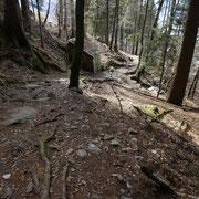 Sentiero per i Monti di Ravecchia