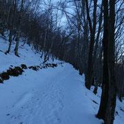 Verso l'Alpe Vicania