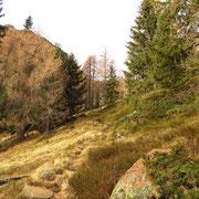 Sul sentiero per Morghirolo e Passo del Leit