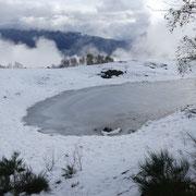 Laghetto dell'Alpe Moschera 1160 m