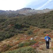 Sul sentiero segnalato per il Passo Bareta