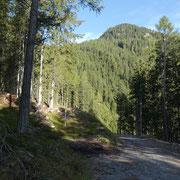 Alla fine della strada devio sul sentiero che conduce all'Alp de Mem
