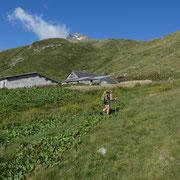 Chilchalp 2086 m e il Chilchalphorn ....... ancora lontano