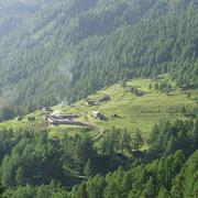 Alpe Pradasca