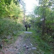 Sul sentiero per l'Alpe di Porcaresc