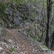 Sul sentiero che collega i Monti di Gerra ai Monti di S. Abbondio