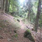Sentiero per Parusciana