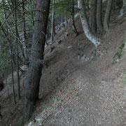 Sentiero delle sculture