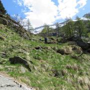 Discesa all'Alpe di Corött