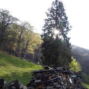 Calascio 990 m