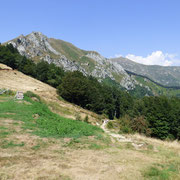 Alpe Cardada 1480 m