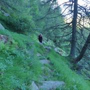 Sentiero Motto - Gagèrn