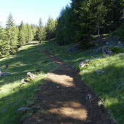 Nuovo sentiero da Pian Lasnèla a Foppascia