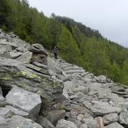 Sul bel sentiero che dal Passo dei Laghetti scende a Foppascia