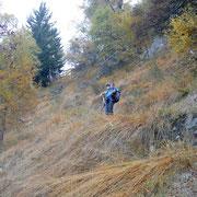 Sentiero per l'Alp di Luarn