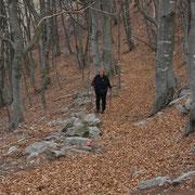 Sul sentiero per il Monte Ferraro