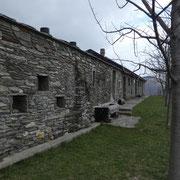 Alpe Nisciora 1444 m
