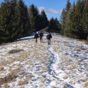 In cammino per l'Alpe di Gesero