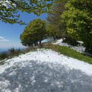 Monte San Bernardo 1351 m