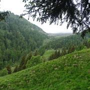 Verso l'Alpe Cassengo e la Capanna Albagno