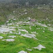 Alpe Albagno 1867 m
