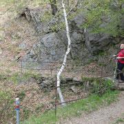 Sentiero per la Capanna Ginestra