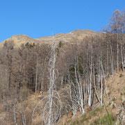 Val Giumella