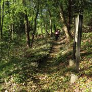 Sentiero verso Albio