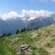 Alpe Negrös 1799 m