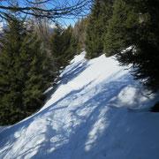 Sentiero per l'Alpe Domàs