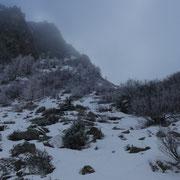 Discesa all'Alpe Tarch