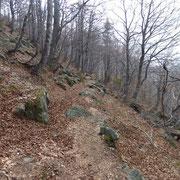 Sentiero per i Monti di Cùrsolo