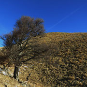 Alla base del Monte Ferraro