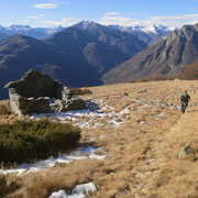 Alpe a 1479 m