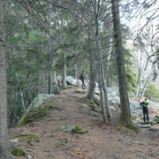 Sul sentiero per l'Alpe Domàs