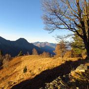 Alpe d'Urno 1403 m